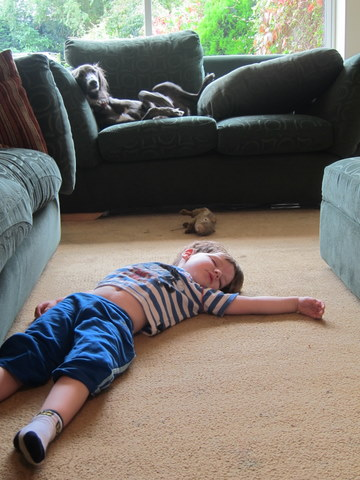 Sleep on the floor floors doors interior design for Is it healthy to sleep on the floor